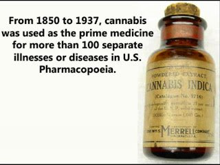 Cure for cancer, Cannabis cures cancer – US government has known since 1974