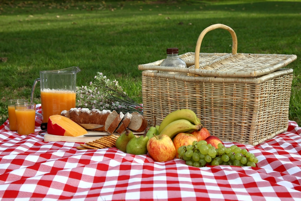 , What to have in mind while organizing a perfect picnic