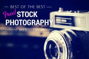 royalty free images stock